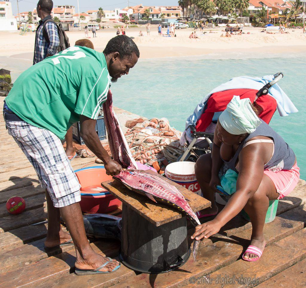 Arbeitsleben auf dem Fischersteg von SAL