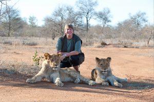 Afrika und Löwen