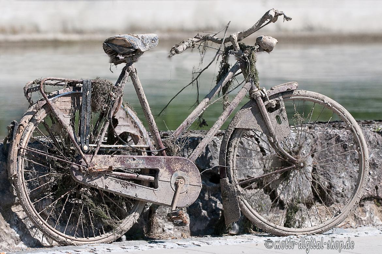 gestrandetes Fahrrad