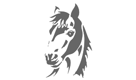 Pferdefreunde Leitzachtal e.V.