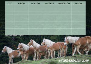 Stundenplan Pferde